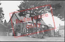 Yew Tree c.1960, Templecombe