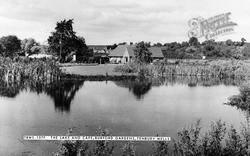 Tenbury Wells, Burford Gardens, Lake And Café c.1965
