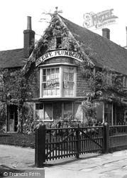 Tenterden, Little Dane Court 1900