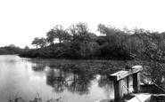 Tenterden, Mill Pond 1901