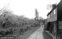 Tenterden, Typical Kent Orchard Cottage And Oast House c.1950
