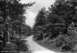 The Bourne, Old Frensham Road 1909