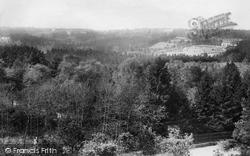 The Bourne, Pine Ridge From Frensham Vale 1909