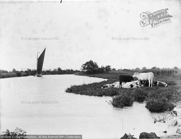 Photo of The Broads, On The Bure c.1900