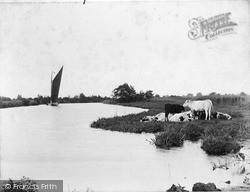 The Broads, On The Bure c.1900