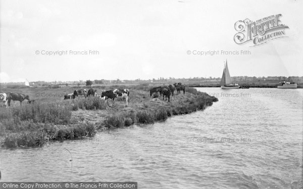 Photo of The Broads, Pastoral At St Benet's c.1931