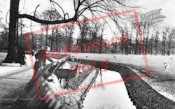 Deer Park c.1930, The Hague