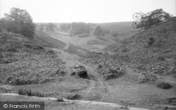 The Quantocks, Butterfly Combe 1894, Quantock Hills
