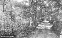 The Quantocks, Cocker Combe 1895, Quantock Hills