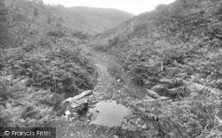 The Quantocks, Danescombe 1929, Quantock Hills