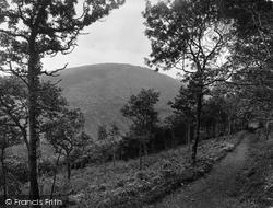 The Quantocks, Pathway To Danesborough 1929, Quantock Hills
