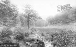 The Quantocks, Seven Wells Combe 1895, Quantock Hills