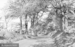 The Wrekin, Ercall Lane c.1960