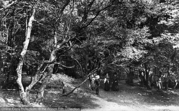 Photo of The Wrekin, On The Path To The Wrekin 1907