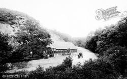 The Wrekin, The Forest Glen 1895