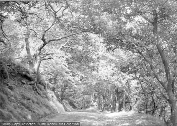 Photo of The Wrekin, The Forest Glen c.1955