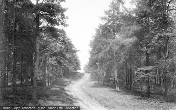 Photo of The Wrekin, The Wrekin Pathway 1910