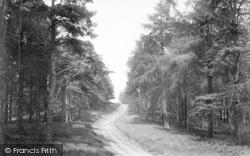 The Wrekin, The Wrekin Pathway 1910