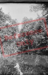 Spring Walk 1921, Thetford