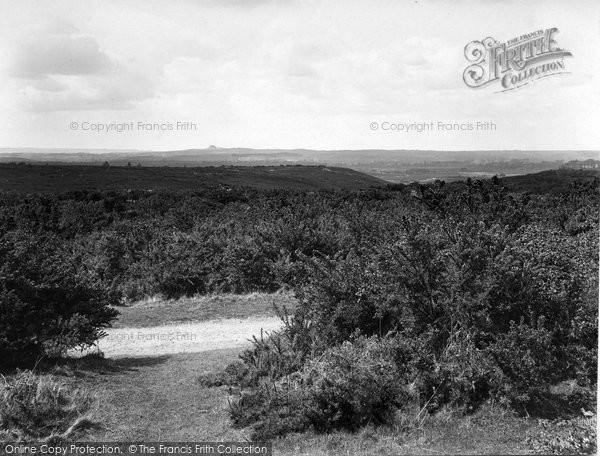 Photo of Thursley, Common 1925