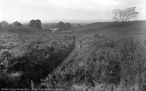 Photo of Thursley, Common, Pathway To Moat Showing Crooksbury 1932