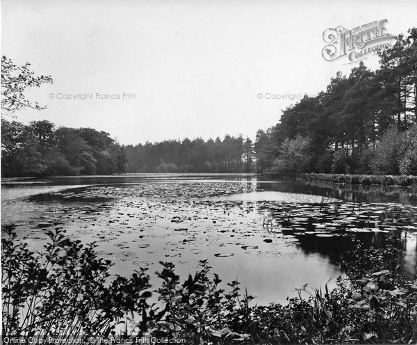 Photo of Thursley, Forked Pond 1925