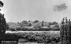 Thursley, The Common From The Church c.1955