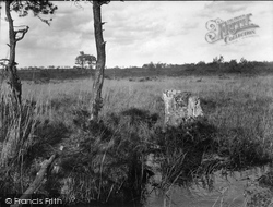 Thursley, Thor's Stone 1925