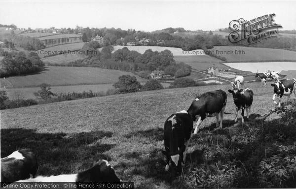 Photo of Ticehurst, General View c.1960