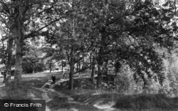 Hacknesh Path 1907, Ticehurst