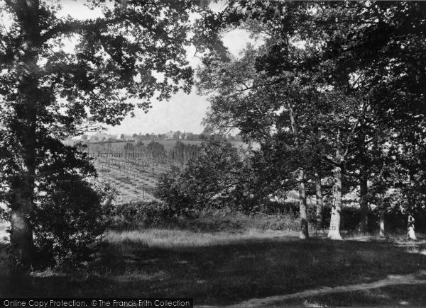 Photo of Ticehurst, Hacknesh Path 1907