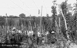 Hop Pickers 1907, Ticehurst