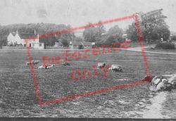 1909, Tilford