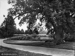 King's Oak And West Bridge 1932, Tilford