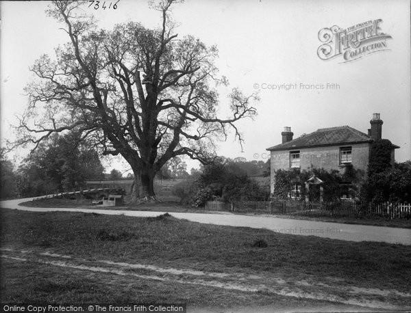Photo of Tilford, Tilford Oak And West Bridge 1923
