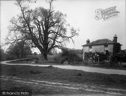 Tilford Oak And West Bridge 1923, Tilford