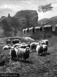 King Arthur's Castle 1894, Tintagel