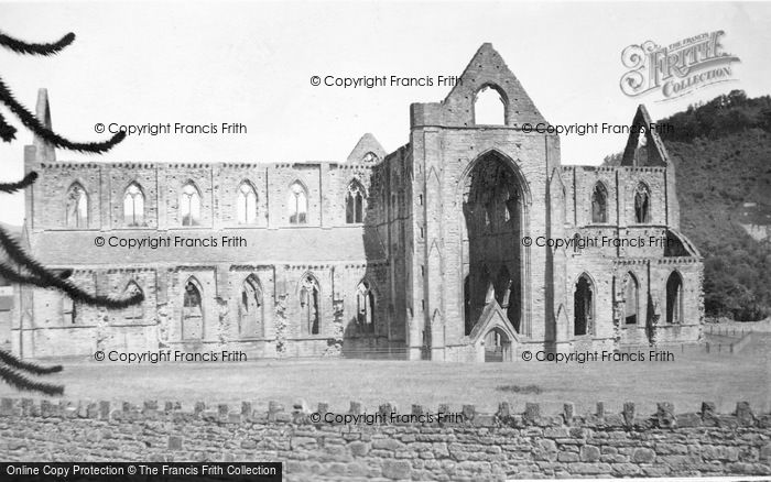 Photo of Tintern, Abbey, South Side 1925