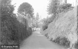 A Pretty Lane c.1939, Tipton St John