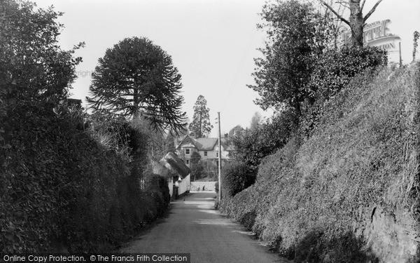 Photo of Tipton St John, c.1950