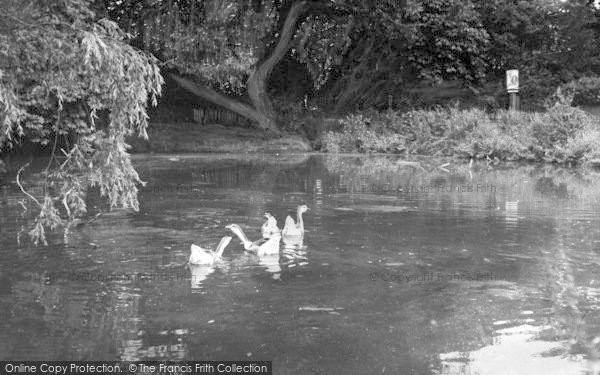 Photo of Tiptree, The Lake c.1955