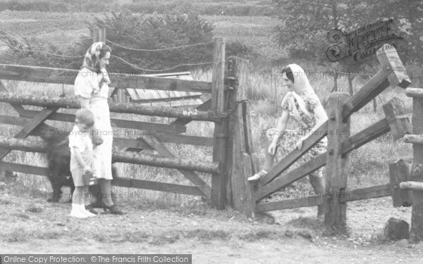Photo of Tiptree, Woman Negotiating The Stile c.1955