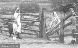 Tiptree, Woman Negotiating The Stile c.1955