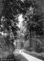 Tiverton, Collipriest Avenue 1914