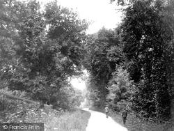 Tiverton, Collipriest Walk 1914
