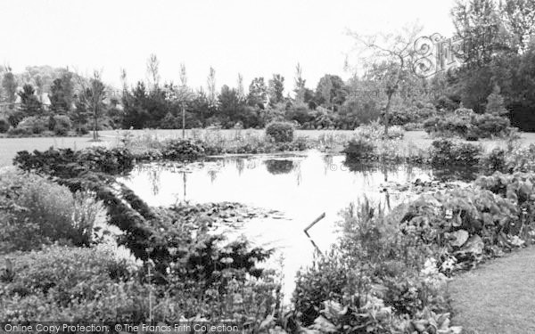 Photo of Tiverton, The Ornamental Pond c.1960