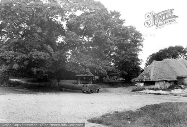 Photo of Tolpuddle, The Martyrs Tree And Seat c.1955
