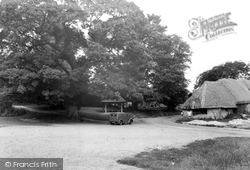 Tolpuddle, The Martyrs Tree And Seat c.1955