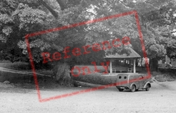 The Martyrs Tree And Seat c.1955, Tolpuddle