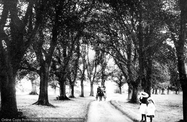 Photo of Tonbridge, Barden Park, The Avenue 1890